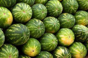 La citrulline en complément alimentaire